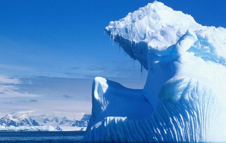 Antarticine