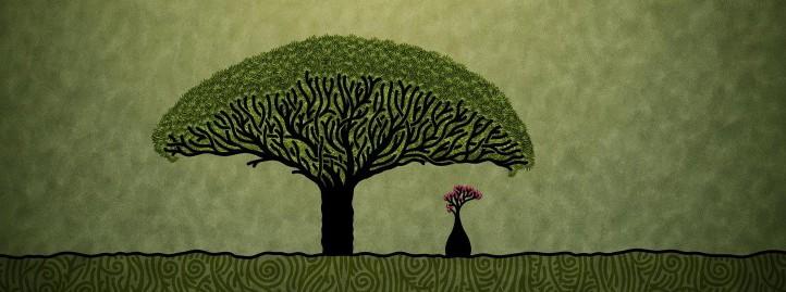 kartinka-baobab