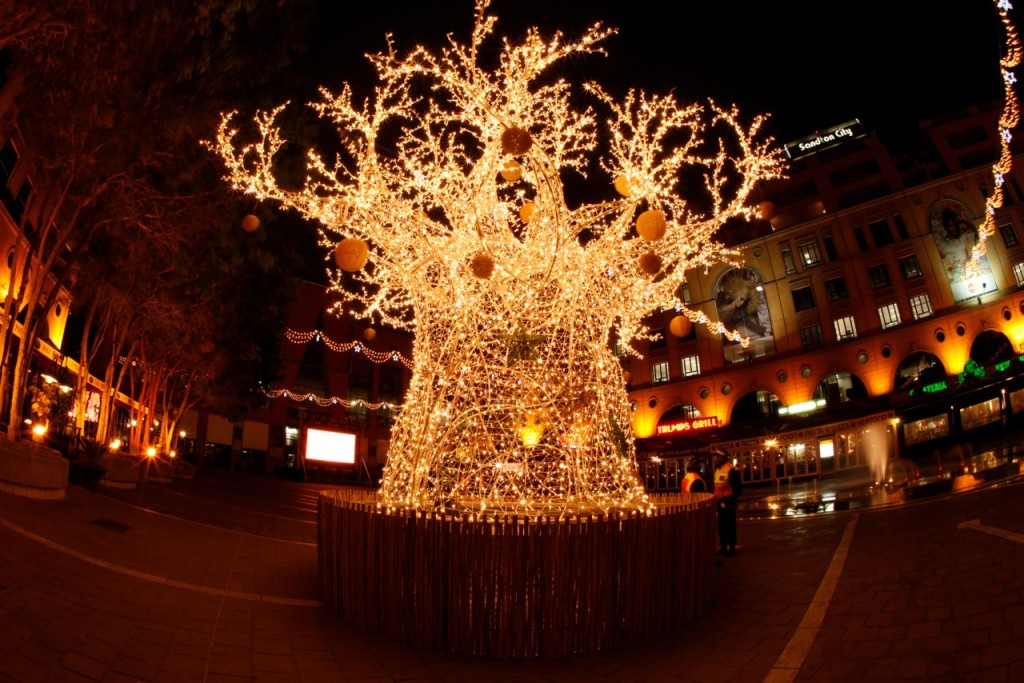 The Christmas Baobab Tree at Nelson Mandela Square in Sandton, Johannesburg (South Africa)