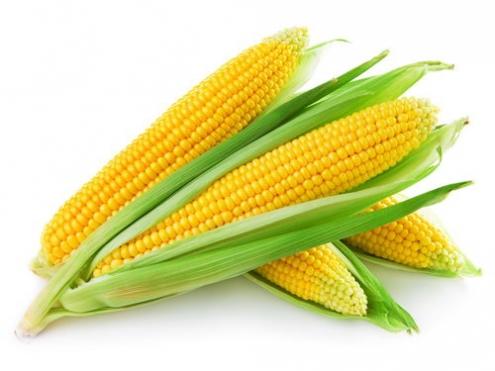 corn-maltodextrin
